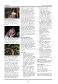 123 Cotinga 32 Short Communications - Neotropical Bird Club - Page 2