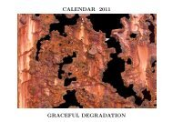 CALENDAR 2011 GRACEFUL DEGRADATION - Alistair J Bray