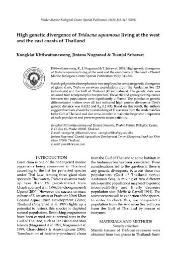 High genetic divergence of Tridacna squamosa living at the west ...