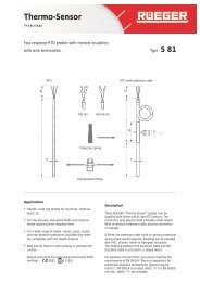 FT_S81_E.pdf - Rueger