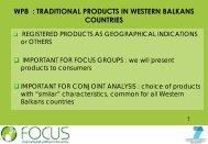 Cliquez ici pour le titre - Focus-Balkans