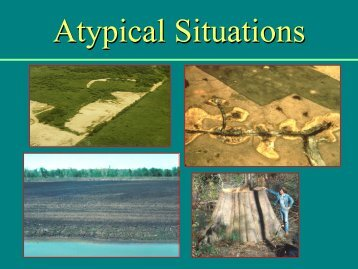 Atypical Situations & Problem Areas