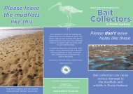 to download the pdf - Poole Harbour Commissioners