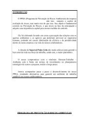 PPRA MODELO III bertozzi.pdf - Prof. Eng. Alexandre Dezem ...