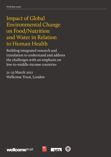 Download the report - Wellcome Trust