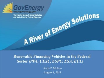 Renewable Financing Vehicles in the Federal Sector ... - GovEnergy