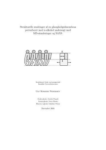A Figurer og tabeller til Kapitel 3 - dirac - Roskilde Universitet