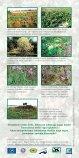 Svešie augi apdraud kāpas - Page 2