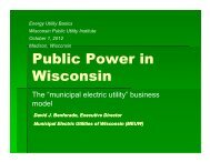 Public Power in Wisconsin: The Municipal Electric Utility Business ...