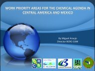 BCRC-Central America and Mexico: Basel Activities and Linkages ...
