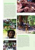 Journal TdH n° 99, p.8-9 - Terre des Hommes Suisse - Page 2