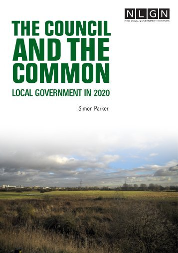 The-Council-and-the-Commons