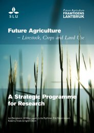 A Strategic Programme for Research Future Agriculture