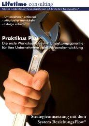 Praktikus Plus - Ulbing consulting