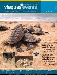 Helping La Isla Nena Sea Turtles - Vieques Events