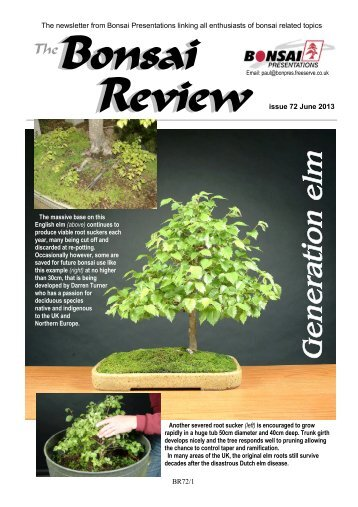 Issue 72 - June 2013 - Federation of British Bonsai Societies