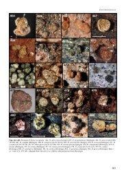 Figs. 464–483. Stromata of Hypocrea species. 464. H ... - CBS - KNAW