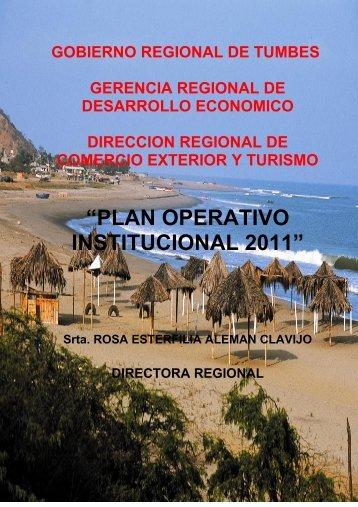"""""""PLAN OPERATIVO INSTITUCIONAL 2011"""" - ITD Consulting"""