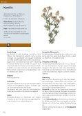 • h.e.p. Heilpflanzen 170x240 Teil 1.indd - Ott Verlag - Page 5
