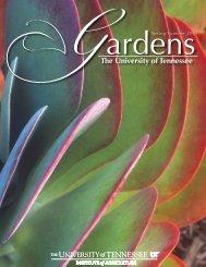 Spring/Summer 2011 - UT Gardens - The University of Tennessee