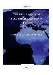THE REGULATION OF ELECTRICITY SECTOR IN TURKEY