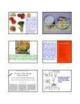 Functional food - Neuroscience.mahidol.ac.th - Mahidol University - Page 6
