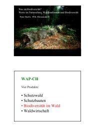 WAP-CH • Schutzwald • Schutzbauten • Biodiversität im ... - Prosilva