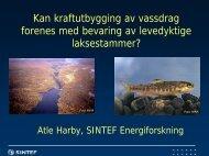 Kraftutb_Harby_SINTE.. - Norske Lakseelver