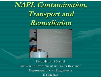 NAPL Contamination, Transport and Remediation