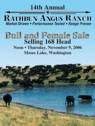 rathbun growth bulls - Angus Journal