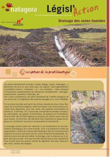 Drainage en zone humide - Natagora.org