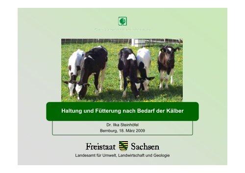 5 Tage - Sachsen-Anhalt