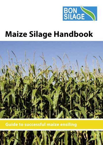 how to make silage from maize