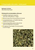 Maize Silage Handbook - Bonsilage - Page 5