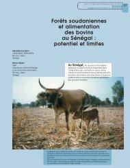 potentiel et limites - Bois et forêts des tropiques - Cirad