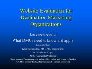 Website evaluation for Destination Marketing ... - Travel Michigan