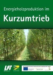 Kurzumtrieb - Österreichischer Biomasse-Verband