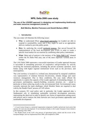 WP8, Delta 2000 case study - RuDI