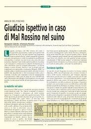 Giudizio ispettivo in caso di Mal Rossino nel suino - SIVeMP