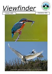 October 2008 Issue - Christchurch Photographic Society