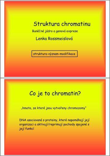 Struktura chromatinu Co je to chromatin? - Laboratory of Biology of ...