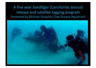 A five-year sand tiger Carcharias taurus release and satellite ...