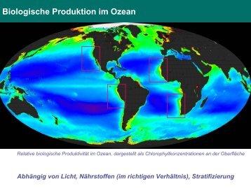 Biologische Produktion im Ozean - GENUS