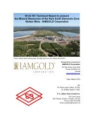 NI 43-101 Technical Report to present the Mineral ... - Iamgold