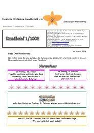 RB 1 2008 für Web - DOG Landesgruppe Württemberg