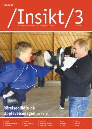 Insikt nr 3, 2008 (pdf 4,0 MB) - Falu Kommun