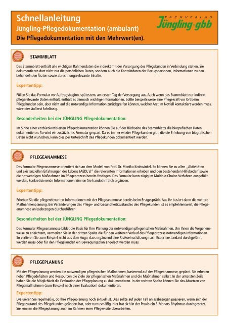 Pflegeanamnese Standardsysteme De Standard Systeme