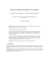 Analyse en Composantes Principales (ACP) asymétrique