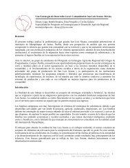 Una Estrategia de Desarrollo Local - Universidad de Chile