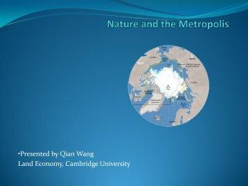 Qian Wang.pdf - UNU-WIDER
